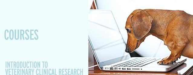 Introduction to Veterinary Clinical Research